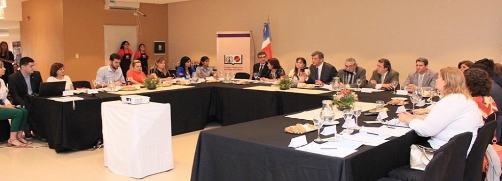 """El MPD participó de la Mesa Redonda """"Proyecto de Ley Provincial de Actos de Autoprotección"""""""